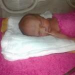 kisbabánkinkubátorban