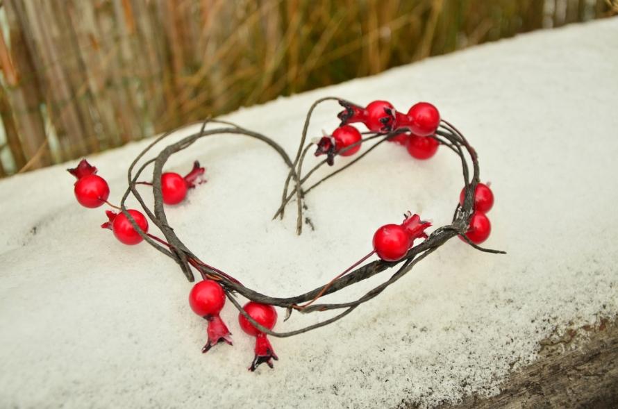 havas fatörzs piros bogyók szív alakban látszanak