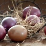 festett tojások